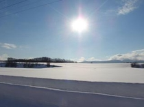 冬・牧草畑
