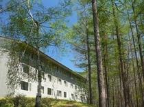 カラマツ林に囲まれた客室棟。