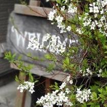 軽井沢の風景(旧軽井沢周辺)
