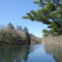 軽井沢の風景(雲場池周辺)