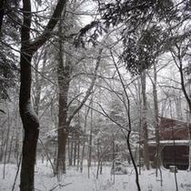 軽井沢、冬の風景