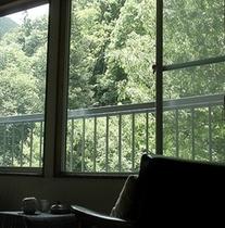 【窓越しに新緑を愛でる】10畳客室からの眺め