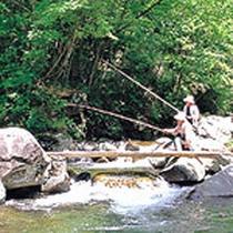 【清流鱒釣りプラン】とっても良く釣れます。釣って焼いて食べる☆自然遊びを堪能