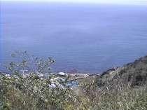 後ろの山から見た我家の風景
