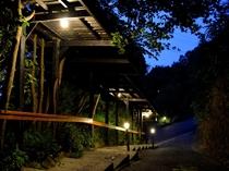夕暮の客室通路