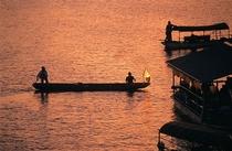 三隈川の鵜飼