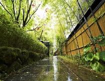 黒竹の美しい、風早エントランス。