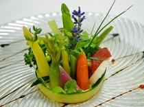 季節野菜の菜園仕立て