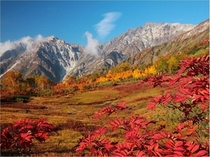 秋の栂池高原