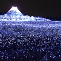【なばなの里・富士山】世界遺産登録を記念してデザインされたイルミネーション