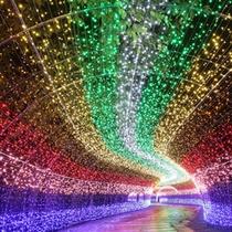 【なばなの里・光のトンネル「虹」】華やかに彩られた光の回廊