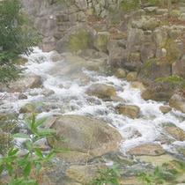 温泉街をぬって流れる渓流「三滝川」。露天風呂からもご覧いただけます