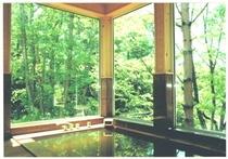 温泉浴室:初夏は新緑、冬は雪見が楽しめる。グループ毎の貸切使用です。