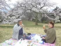 会津の花見山『中山風穴公園』
