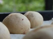朝食の手作りパン〜発酵中〜