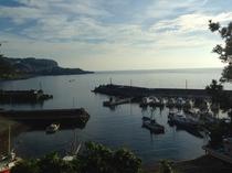 早朝の富戸の港