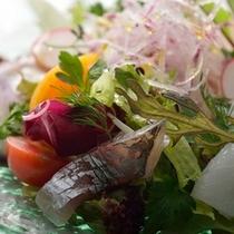 鎌倉フレンチ 前菜一例
