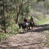-【宿近くの乗馬施設】周辺のトレッキング