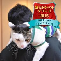 *楽天トラベルアワード2015・リトルスター入賞!