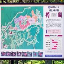 *大島公園