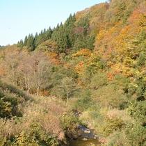 *【紅葉イメージ】秋は周辺の山々が赤や黄色に色づきます。