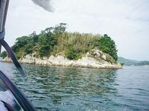 クッチェッタ前の桟橋から出港!こちらは浜名湖唯一の島です。
