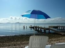 梅雨が明けました。朝食前のひと泳ぎ♪