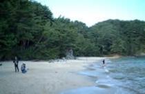 十八鳴浜(徒歩20分)