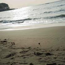 海岸イメージ