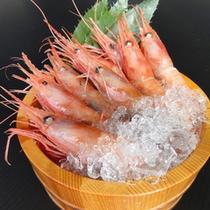 *【別注料理】/南蛮エビの桶盛り/ぷりっぷりのエビをお造りでぜひご賞味下さい(一例)