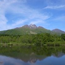 【春の妙高山】 いもり池にて
