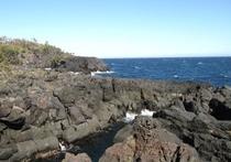 徒歩10分の城が崎海岸は大室山の噴火の溶岩でできた海岸です。