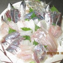 10月6日の地魚の刺身