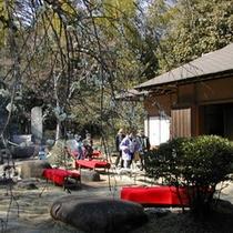 【修善寺梅林内の茶室「双皎山荘」】