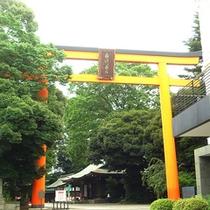 *川越氷川神社/縁結びの神様としても女性から大人気の神様