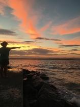 裏の海からの夕陽。
