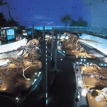 *福井県恐竜博物館…当館より車で120分