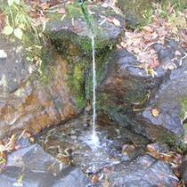 *【志賀高原の清水】館内には「志賀高原のおいしい水」の給水スポットもあります!