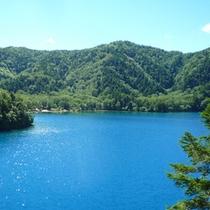 *【夏】鮮やかな太陽に照らされる大沼池。トレッキングで回るのが人気♪