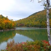 *【秋】秋のビワ池は紅葉がとても美しい鑑賞スポット☆