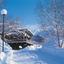 ホテル入り口(雪)