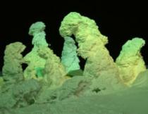 ライトアップ樹氷
