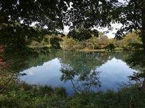 どっこ沼の紅葉