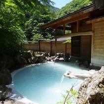 【鬼ヶ城】深緑に囲まれた見晴らしの野天風呂