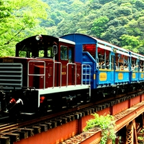 <夏・ロッコ列車>かわいい!!トロッコ列車♪♪出発進行!!ガタン、ゴトン。のどかな風景に癒されるわ。