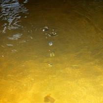 昭和29年(1954年)温泉保養地第1号に指定された四万温泉。