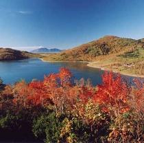 【観光・散策 秋】北欧の佇まいのある分水嶺に位置する湖。当館から車で1時間40分、紅葉は例年9月下旬