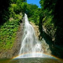 *暗門の滝/散策コースで一番人気。世界遺産のブナ林を抜けて辿り着く癒しの風景です!