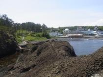 越前松島から見た水族館