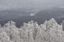 客室からの眺め(雪景色)